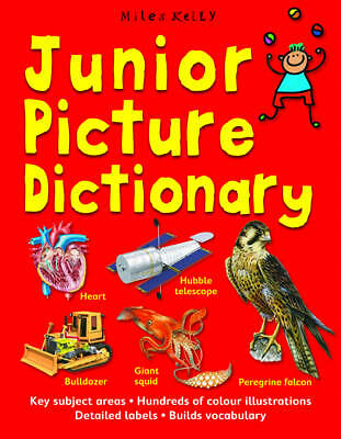"""""""VERY GOOD"""" Junior Picture Dictionary, Belinda Gallagher, Book"""