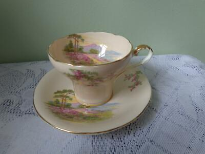 Aynsley Bone China Pale Pink Stream & Mountain Corsetted Cup & Saucer