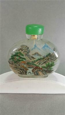 Beautiful ~ Antique ~ Chinese ~ Reverse Painted Snuff Bottle