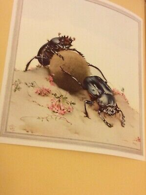 FABRE'S BOOK OF INSECTS 1936 .Tipped-In Color Plates DETMOLD Illustrations
