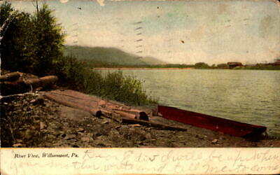Postcard River View Williamsport Pennsylvania 1908 Postmark
