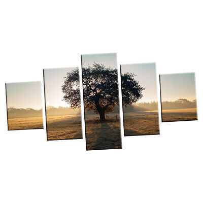 Canvas Printed Art Wall Picture 5 Panel Sunset Framed Paint Poster Sunrise