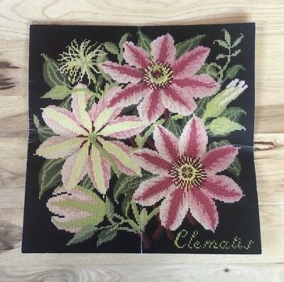 Climbing Flowers The Clematis Elizabeth Bradley Designs Needlepoint Pattern ONLY