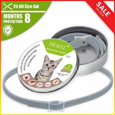33 cm DEWEL CATS Seresto Flea And Tick Collar For Cats Dogs 8 Month Protection