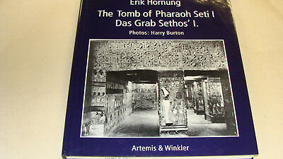 the tomb of pharaoh stei 1