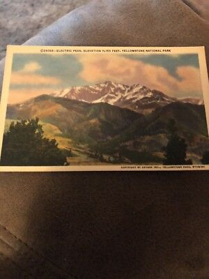 Dr Jim Stamps Us Electric Peak Linen Postcard Yellowstone National Park 1950