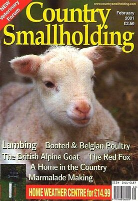 COUNTRY SMALLHOLDING Feb2001 BOOTED & BELGIAN POULTRY BRITISH ALPINE GOAT LAMBS
