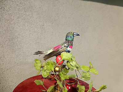 Exc Antique Wind Up German Singing Bird Cage Music Box Real Hummingbird Feathers