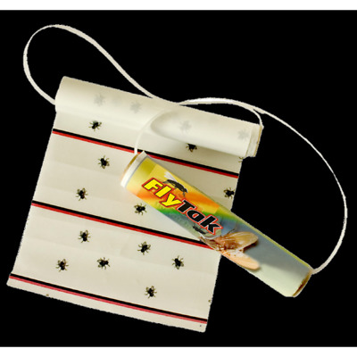 FlyTak Sticky Fly Roll Mini width 200 mm complete with holder