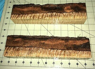 Two Hawaiian Chocolate Heart Extreme Curly Spalted Mango w/Live Edges ~ (#859)