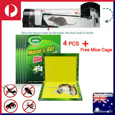4Pcs MAX STRONG Sticky Mouse Rat Snake Mice Bugs Glue Trap Catcher Board Kitchen