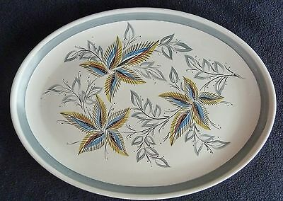 Denby Stoneware Oval Decorative 32 cm  Plate Leaf / Leaves Design Pottery