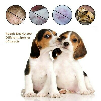 Adjustable Flea and Tick Collar Anti Insect for Pet Dog Cat 8 Month Protection U
