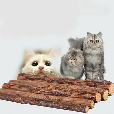 5x Pet Chew Stick Natural Matatabi Catnip Cat Molar Grinding Claws Treat Toy ^F