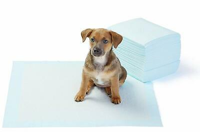 Amazonbasics Pet Training Puppy Pads Regular Heavy Duty 50 Count 22x22