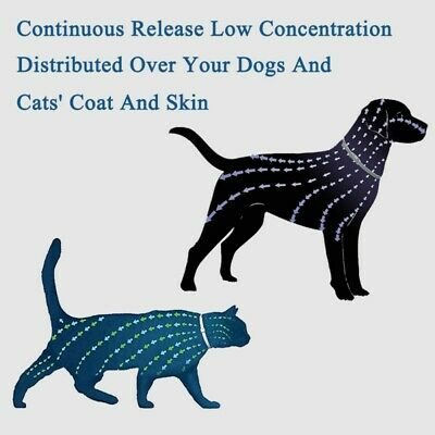 25inch Flea and Tick Collar Anti Insect for Small Pet Dog Cat 8 Month Protection