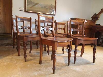 Chairs rare set of 8 Essex bar back kitchen chairs J R Bedwell Colchester c1830