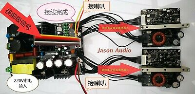 ICEPOWER250A Power Supply Board 45V 600W+ 2PCS ICE250A Amplifier Module + cables