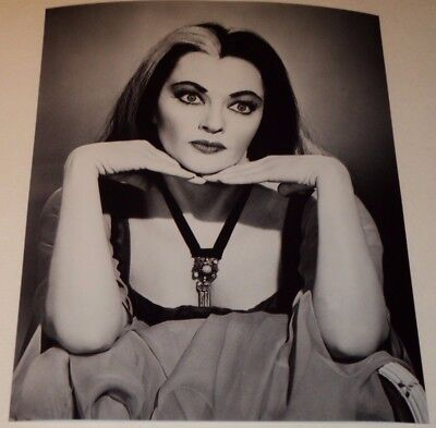 YVONNE DE CARLO / THE MUNSTERS /  8 x 10  B&W  PHOTO