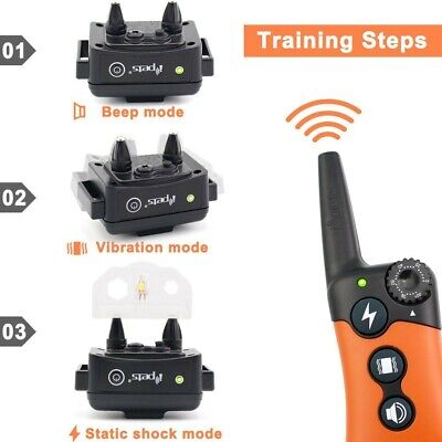 Ipets PET619S1 950ft Remote Dog Training Collar Rechargeable Waterproof Shock