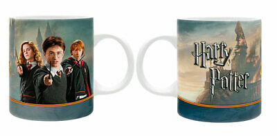 Taza Harry Potter. Personajes y lucha final.