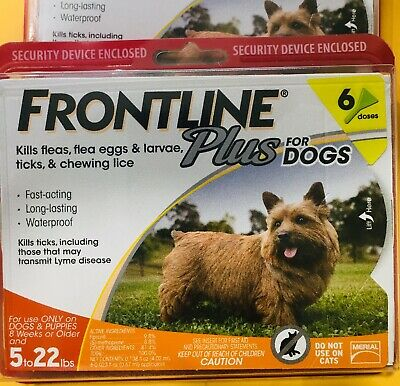Frontline Plus for Dogs Small 5-22 lbs Flea Tick Treatment, 6 Doses Free Shippin