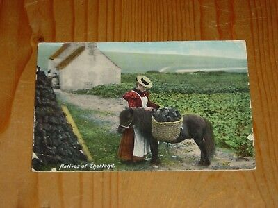 Postcard  Natives Of Shetland.