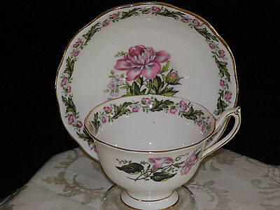Vintage Royal Albert China Footed Cup & Saucer Set in the Cotswold pattern
