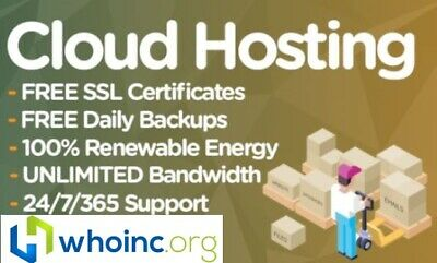 1 Website / Web Hosting For 1 Year, 100% SSD, cPanel, Support Included!