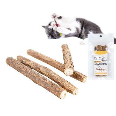 20pcs Cat Snacks Matatabi Chew Catnip Pet Stick Teeth Molar Cleaning Brush Toy