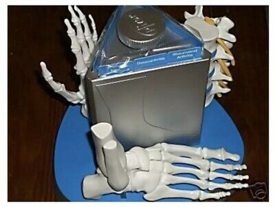 Anatomical Arthritis Model Hand Spine Foot Bones  Skeleton Skeletal Display