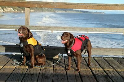 D-FA Dogs Float Doggy PFD - Dog Life Jacket, size small for 13-25 lb dogs