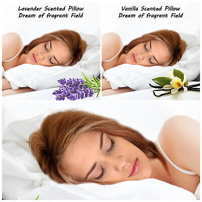 2 X Pillow Case Luxury 100% Cotton Housewife Pair Pack Bedroom Pillows Covers