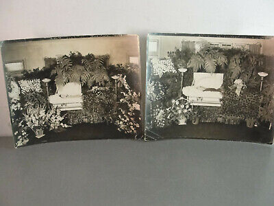 Antique Funeral Photo Death Coffin Casket Pictures Husband Wife Wake Photograph