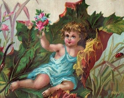 1880's Infant Cherub Ladybug Giant Leaf Bronners Victorian Trade Card P85