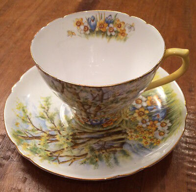 "Shelley Fine Bone China ""Daffodil Time"" Flowers Tea Cup & Saucer England 13370"
