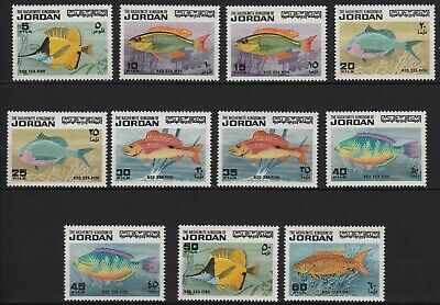 An11* lot x11 Jordanie Jordan red sea poisson fish neuf** MNH TBE full set