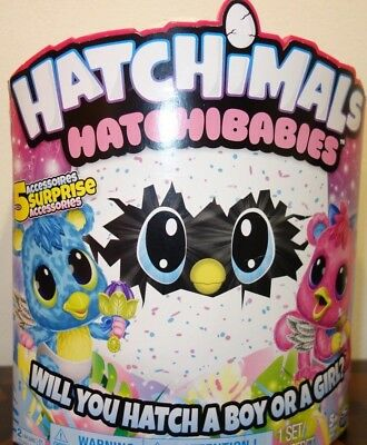 New Hatchimals Hatchibabies - Koalabee  BOY OR GIRL