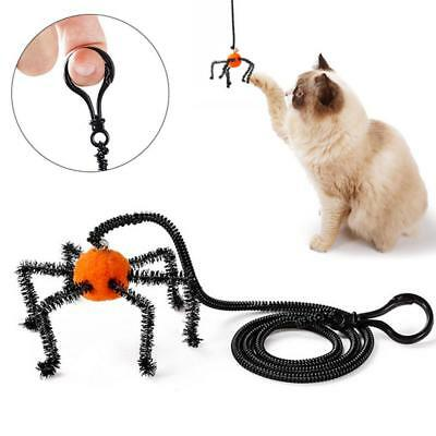 New Cat Spider Kitten Toys Halloween Spider Finger Interactive Pet Toy For Gifts