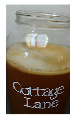 Kombucha Scoby w/ Starter Tea Live Mother Culture Brewed w/ Organic Black Tea