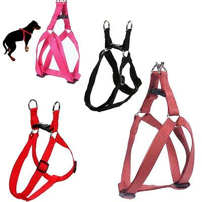 Small Pet Dog Cat Step-in Control Training Harness Walk Collar Safety Strap S-XL