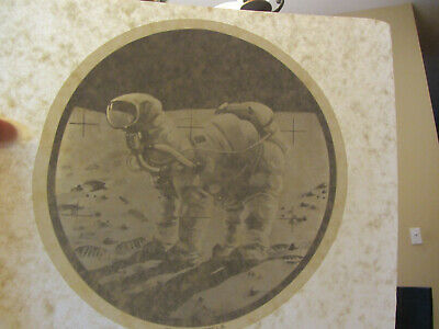 CAMEL MOONMADNESS full size iron on t shirt transfer vintage 70s item NOS