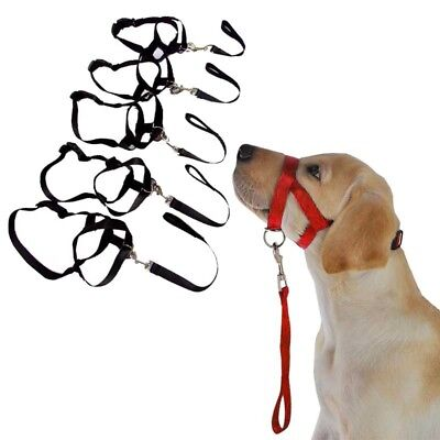 Pet Dog Head Collar Gentle Halter Leash Leader No Pull Straps For Training Dogs