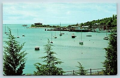 Postcard MA Cape Cod Woods Hole View of Harbor Bay Boats N4