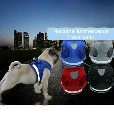 Breathable Mesh Puppy Vest For Pet Walk Small Dog Cat Pet Harness and Leash Set