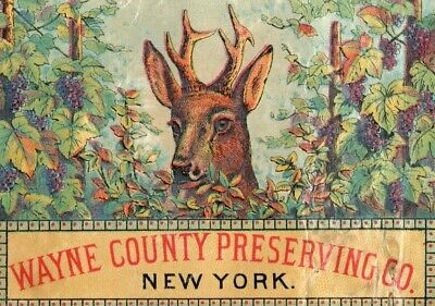 Lot of 4 1870's Wayne County Preserving Co. NY Tin Can Label Victorian Card &S
