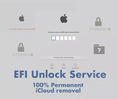 MacBook iCloud / EFI / Bios Firmware Unlock Service Removal Fast Return
