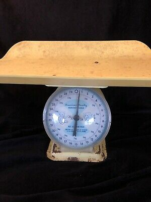 Vintage Baby Scale Nursery Decor Yellow  Blue  30 Pounds really works