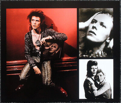 David Bowie Poster Page . The Man Who Sold The World . Hunky Dory . Lulu . T2