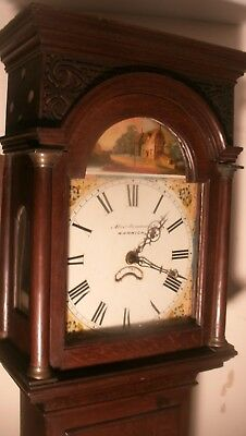 "Antique Slim  Oak  "" Warwick ""    Longcase / Grandfather Clock"